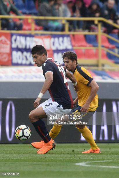 Adam Masina of Bologna FC in action during the serie A match between Bologna FC and Hellas Verona FC at Stadio Renato Dall'Ara on April 15 2018 in...