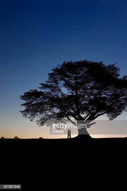 adam n eve - lone tree - adam and eve stock pictures, royalty-free photos & images