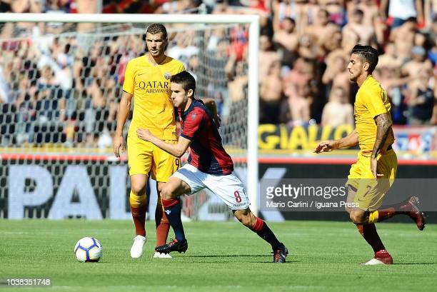 Adam Nagy of Bologna FC in action during the serie A match between Bologna FC and AS Roma at Stadio Renato Dall'Ara on September 23 2018 in Bologna...