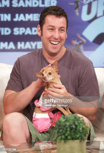 Adam Sandler of 'Grown Ups 2' cast appears on Univision's 'Despierta America' to promote the movie at Univision Headquarters on July 8 2013 in Miami...