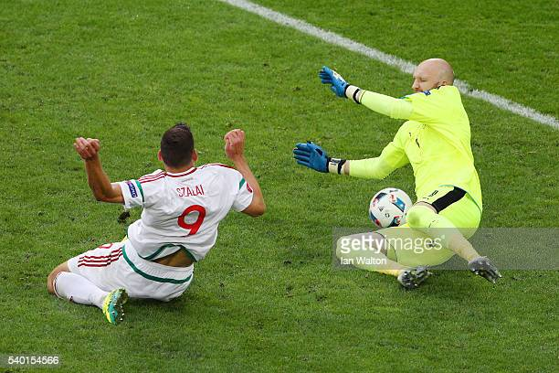 Adam Szalai of Hungary scores his team's first goal past Robert Almer of Austria during the UEFA EURO 2016 Group F match between Austria and Hungary...