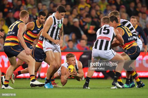 Adam Treloar of the Magpies competes for the ball during the round four AFL match between the Adelaide Crows and the Collingwood Magpies at Adelaide...