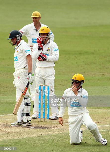 Adam Voges Michael Johnson and Marcus Harris look on after dropping George Bailey of the Tigers during day four of the Sheffield Shield match between...