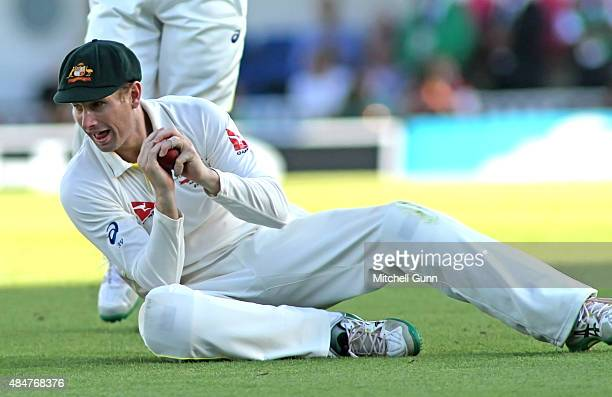 Adam Voges of Australia catches the ball to dismiss Stuart Broad of England during day two of the 5th Investec Ashes Test match between England and...