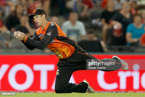 Adam Voges of the Perth Scorchers takes a catch to dismiss Kane Richardson of the Melbourne Renegade during the Big Bash League match between the...