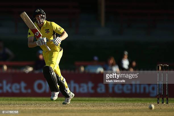 Adam Voges of the Warriors bats during the Matador BBQs One Day Cup match between Tasmania and Western Australia at North Sydney Oval on October 15...