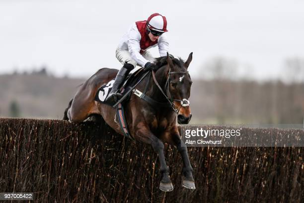 Adam Wedge riding Joe Farrell clear the last to win The Rosemary Appeal Novices' Limited Handicap Chase at Newbury racecourse on March 23 2018 in...