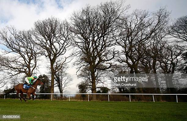 Adam Wedge riding The Gipper on their way to winning The racingukcom/anywhere 'National Hunt' Novices' Hurdle at Ludlow racecourse on January 12 2016...