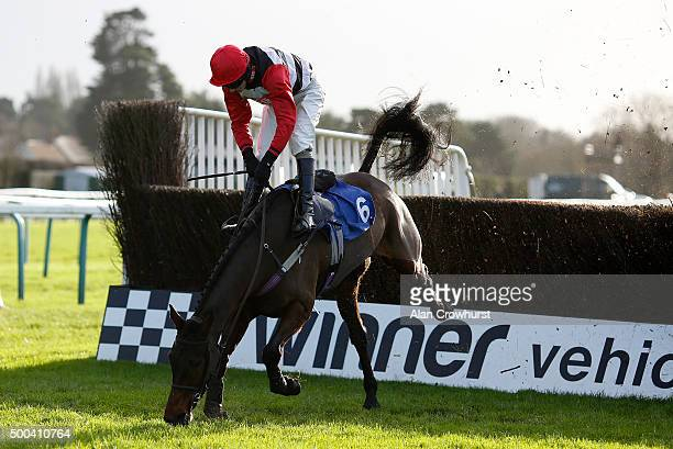 Adam Wedge riding Zero Visability fall when leading at the last in The T I Engineering Structural Ltd Handicap Steeple Chase at Fontwell racecourse...