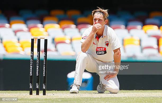 Adam Zampa of the Redbacks during day two of the Sheffield Shield match between Queensland and South Australia at The Gabba on November 18 2016 in...