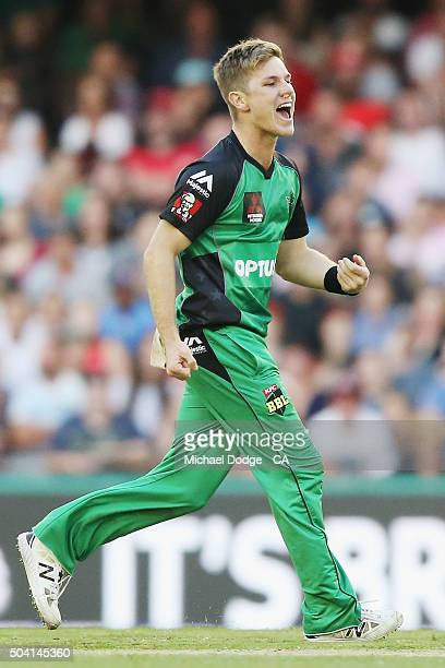 Adam Zampa of the Stars celebrates a wicket during the Big Bash League match between the Melbourne Renegades and the Melbourne Stars at Etihad...