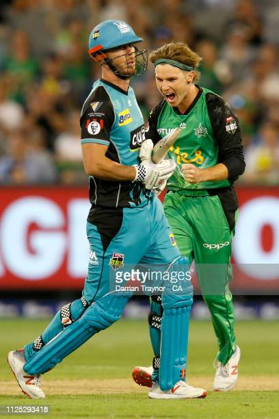 Adam Zampa of the Stars celebrates the wicket of Chris Lynn of the Brisbane Heat during the Big Bash League match between the Melbourne Stars and the...