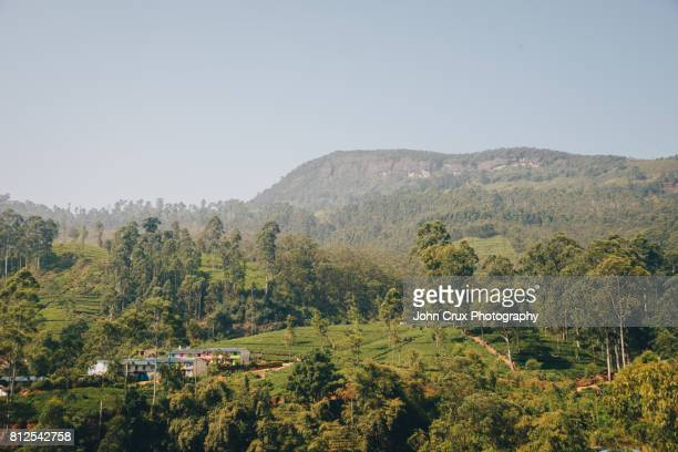 adams peak hills
