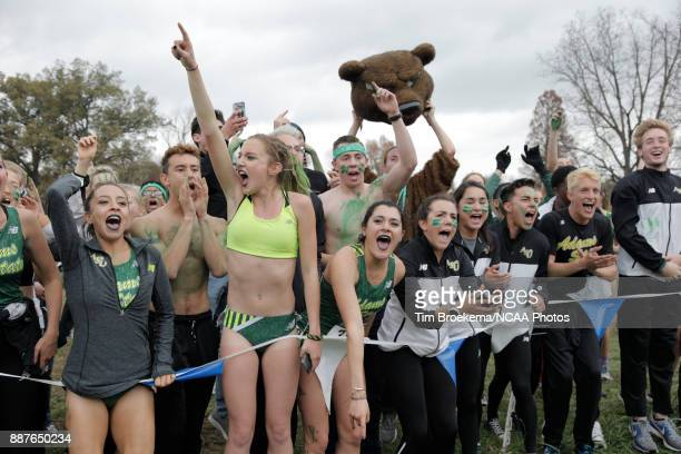 Adams State University supporters cheer during the Division II Men's Cross Country Championship held at the Angel Mounds on November 18 2017 in...