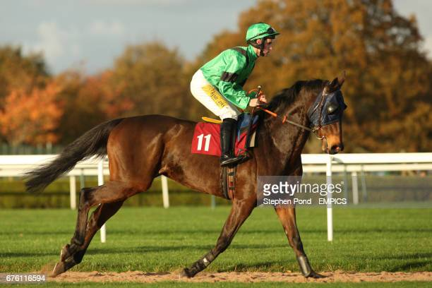 Adare Prince ridden by Paddy Aspell goes to post for The Subscribe On Line At racingukcom Handicap Hurdle Race