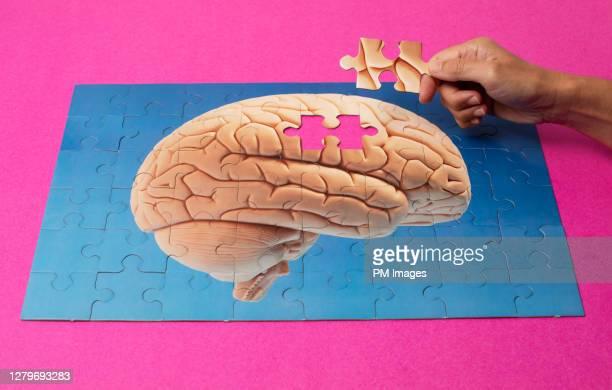 adding last piece of human brain puzzle - final game fotografías e imágenes de stock