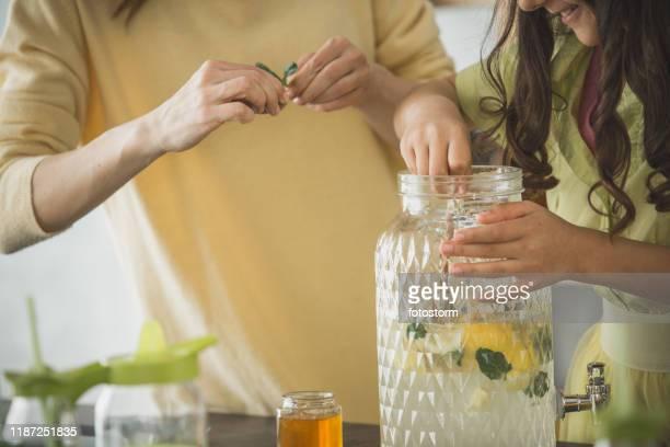 añadir menta a una limonada fresca - mint plant family fotografías e imágenes de stock