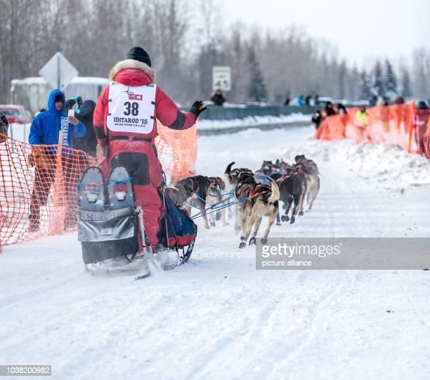 Addison Illinois musher Charley Benja at the start of the 2015 Iditarod Sled Dog Race in Fairbanks Alaska 09 March 2015 Photo Scott Chesney/dpa |...