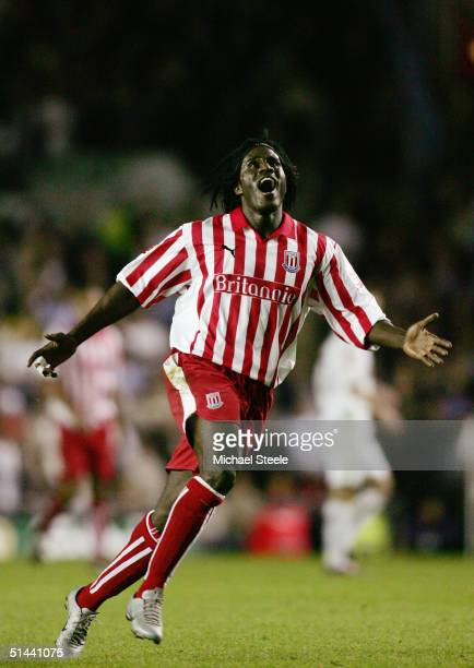 Ade Akinbiyi of Stoke City in action during the Coca Cola Championship match between Leeds United and Stoke City at Elland Road on September 28 2004...
