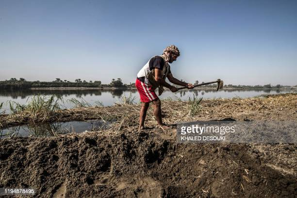 Adel Yacoub a 50yearold Egyptian farmer works a field along the bank of the Nike river in the village of Gabal alTayr north of Egypt's southern city...