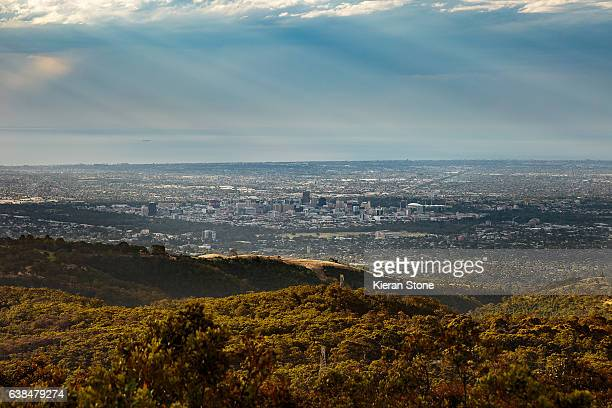 adelaide - adelaide stock pictures, royalty-free photos & images