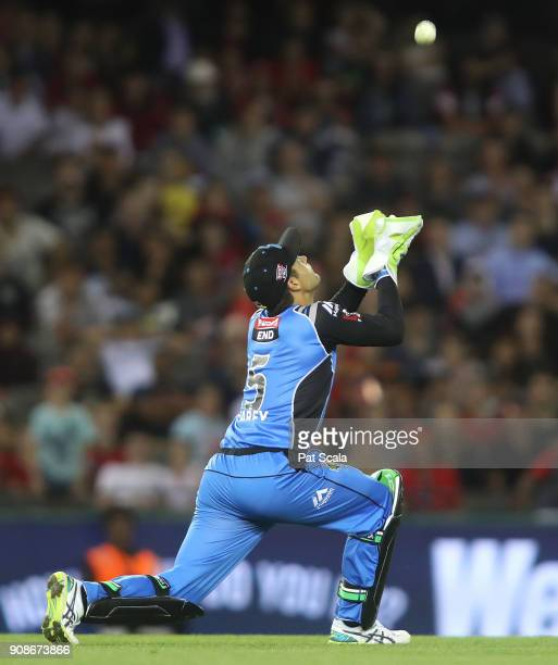 Adelaide Strikers Alex Carey takes a catch to dismiss Renegades Tom Cooper during the Big Bash League match between the Melbourne Renegades and the...