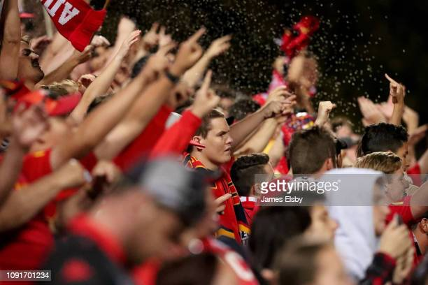 Adelaide United fans celebrate their win during the round 12 A-League match between Adelaide United and the Melbourne Victory at Coopers Stadium on...
