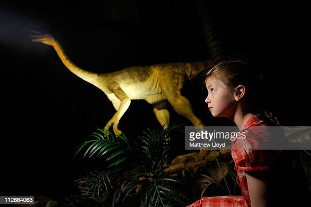 Adele Clark, aged 8, looks at an animatronic Gallimimus dinosaur at the Natural History Museum on April 20, 2011 in London, England. The Age of the...