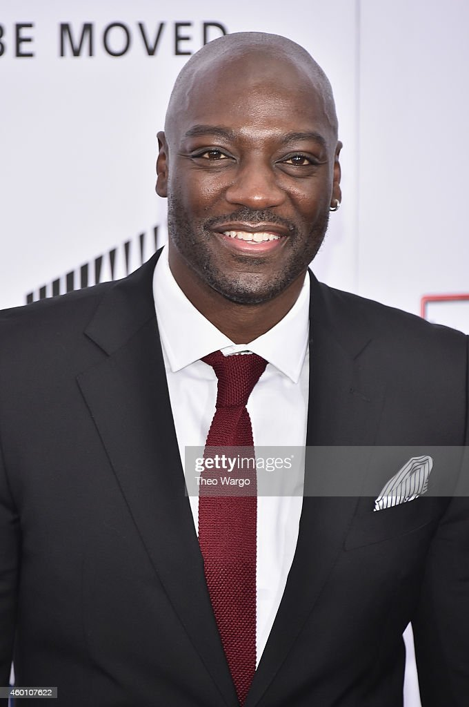 Adewale Akinnouye-Agbaje attends the 'Annie' World Premiere at Ziegfeld Theater on December 7, 2014 in New York City.