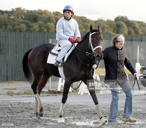 Adieu with jockey Angel Cordero up walks the track at Belmont Park in preparation for the 2005 Alberto V05 Breeders' Cup Juvenile Fillies one of...