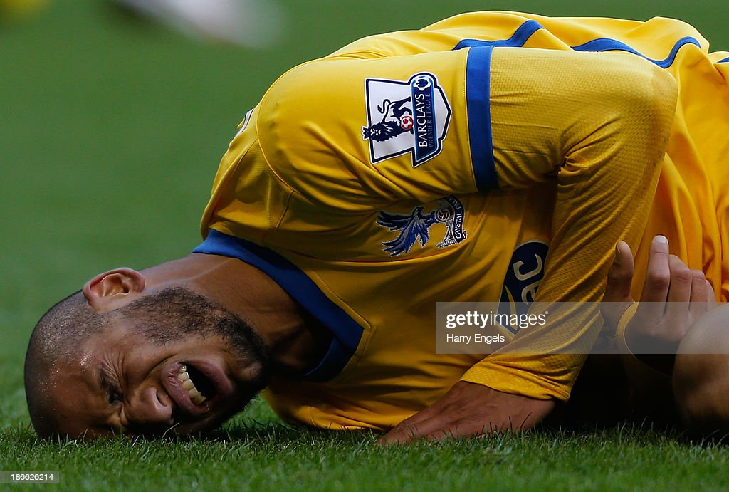 Adlene Guedioura of Crystal Palace reacts after being injured during the Barclays Premier League match between West Bromwich Albion and Crystal Palace at The Hawthorns on November 2, 2013 in West Bromwich, England.