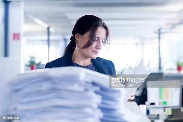 administrative staff working alone in office - sigrid gombert stock-fotos und bilder