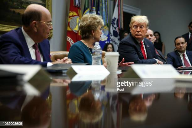 Administrator of the Small Business Administration Linda McMahon speaks as U.S. President Donald Trump listens during the inaugural meeting of the...