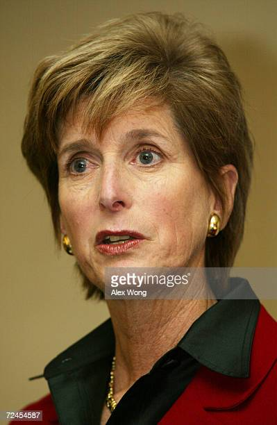 Administrator of US Environmental Protection Agency Christine Todd Whitman addresses an American Enterprise Institute luncheon February 19 2002 in...