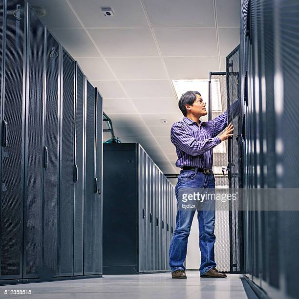 administrator working on a server - male animal stock pictures, royalty-free photos & images