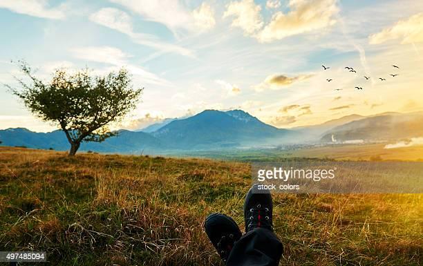 Admirant Carpathian montagne
