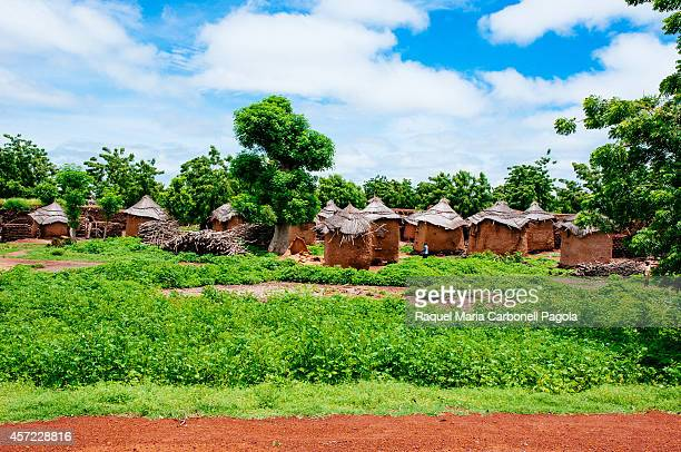 Adobe granaries where millet is stored in a traditional village