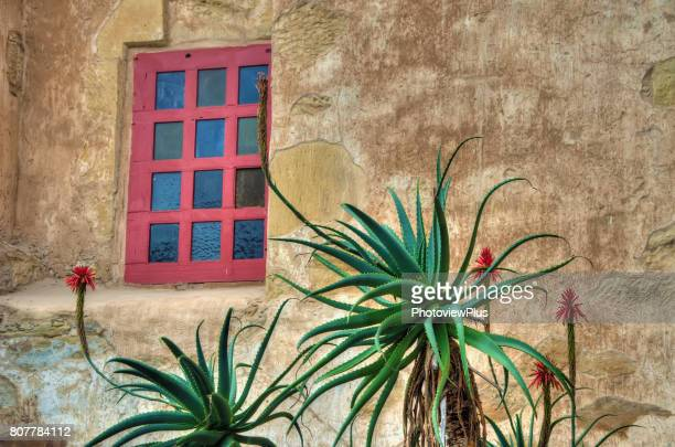 adobe wall and blooming aloes - santa barbara stock photos and pictures