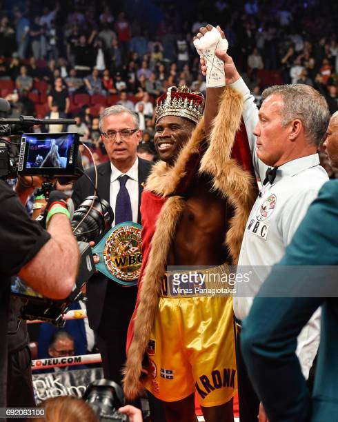 Adonis Stevenson celebrates his victory against Andrzej Fonfara during the WBC light heavyweight world championship match at the Bell Centre on June...