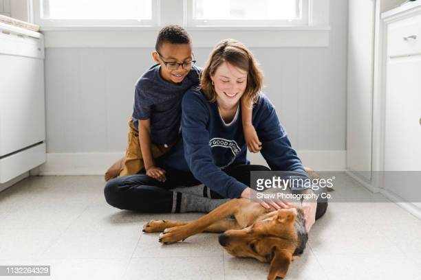 adopted african american boy with adopted dog and adoptive mother - pet adoption stock pictures, royalty-free photos & images