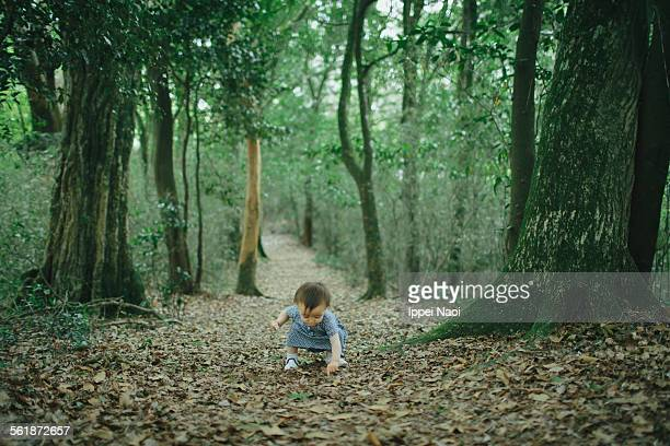 adorable baby girl playing in forest - ippei naoi stock photos and pictures