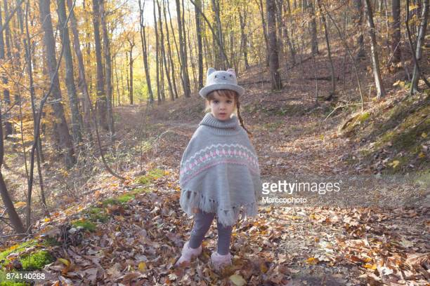 adorable cute little baby girl with knitted hat and poncho sweater in yellow autumn forest looking at camera - poncho stock pictures, royalty-free photos & images