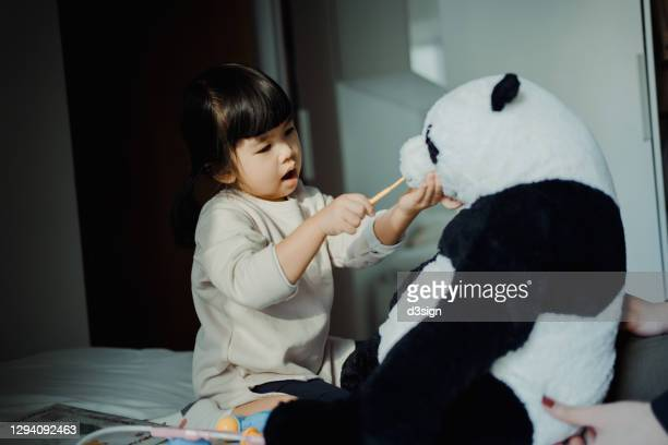 adorable little asian girl playing with her soft panda toy, brushing the teeth of the soft panda toy with a toothbrush, playing a dentist game at home - adult imitation stock pictures, royalty-free photos & images