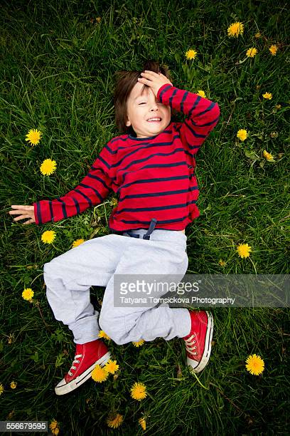 Adorable little boy, lying on the grass, dandelion