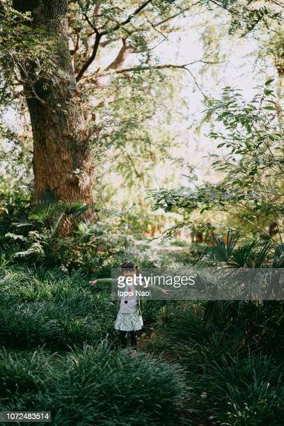 Adorable mixed race little girl walking through forest with arms outstretched, Tokyo