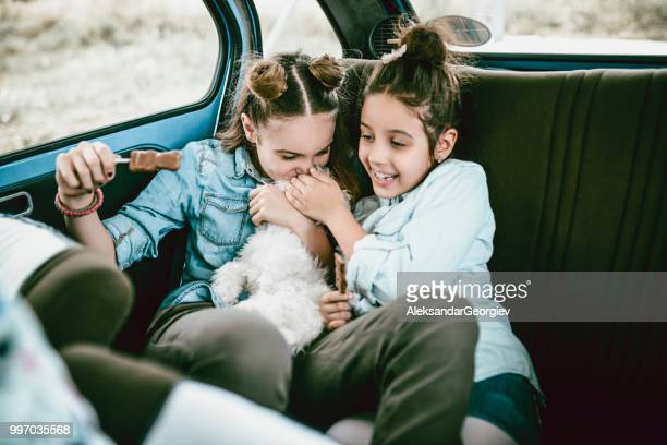 adorable sisters playing with pet dog and eating lollipop in car backseat - dog eats out girl stock pictures, royalty-free photos & images