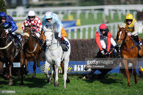 Adrian Doyle riding Merrion Square fall during The williamhillcom Mobile Cheltenham Money Back 2nd Handicap Steeple Chase at Sandown racecourse on...
