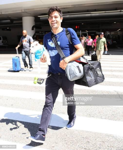 Adrian Grenier is seen on June 15 2017 in Los Angeles California