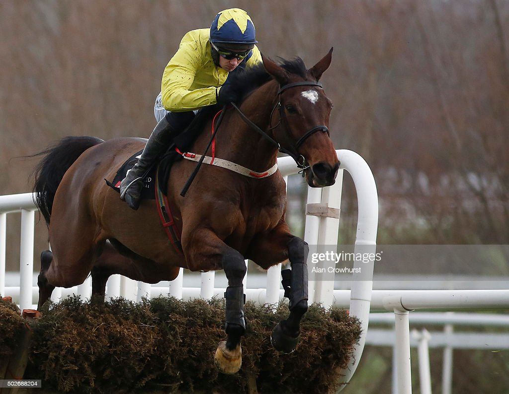 Adrian Heskin riding Martello Tower in action at Leopardstown racecourse on December 28, 2015 in Dublin, Ireland.