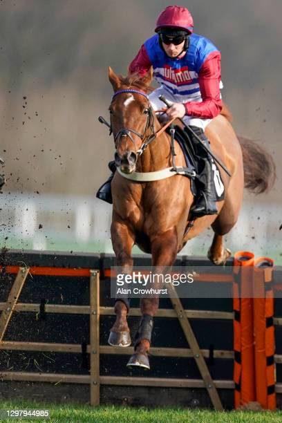 Adrian Heskin riding Tritonic on their way to winning The bet365 Juvenile Hurdle at Ascot Racecourse on January 23, 2021 in Ascot, England. Due to...